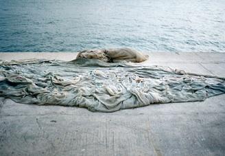 createur poubelle ocean